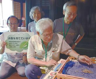 蚕の成長を見守るボランティア