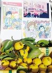 岩沢厚治さんの実家から提供されたゆずの実も配布