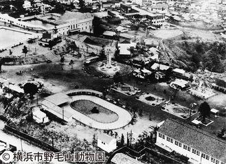 開園当初の遊園地全景。動物園は遊園地の一部だった