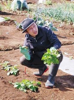 「野菜愛」溢れる小山社長