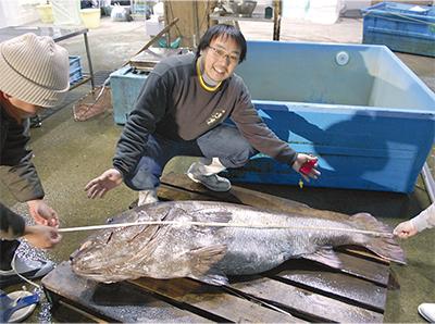 本牧沖で謎の巨大魚を漁獲