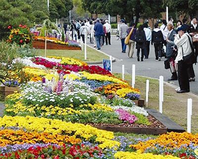 花と緑に親しむ祭典
