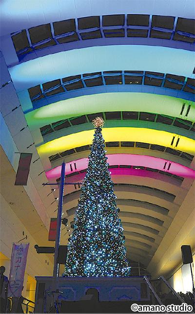 クリスマスツリーが点灯