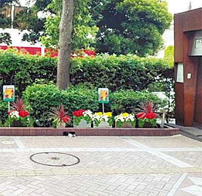 西口に花プランター設置