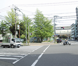 区庁舎移転地(写真左奥)付近も対象地区に
