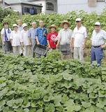 菜園作りを行う友和会の会員