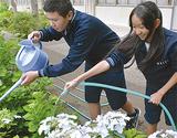 アジサイに水をやる深田君(左)と渡邉さん