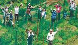 森の中で活動する会員たち