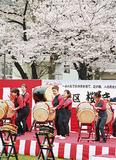 桜の前に設けられた舞台で行われた太鼓演奏