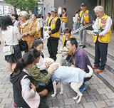 盲導犬に触れる通行人