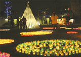 公園内に光の作品が並ぶ(昨年の様子)