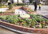 蒔田公園に設置された花壇