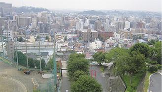 マンションや木造住宅が並ぶ区東部