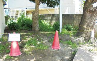 建築基準法違反の疑いがある井土ケ谷小のブロック塀(市教育委員会提供)