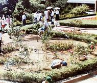 こども植物園が40年