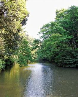 瀬上市民の森の中にあるオアシス「瀬上池」