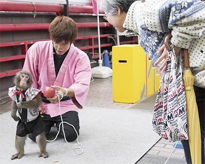 猿の演技に拍手喝采