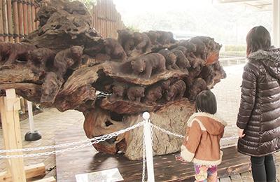 ズーラシアに木彫り熊