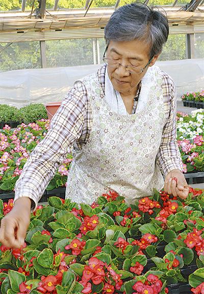 石川さんが農水大臣賞