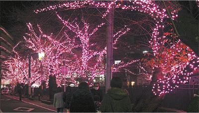 「光の桜」期間延長