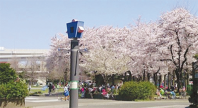 メーン会場は蒔田公園
