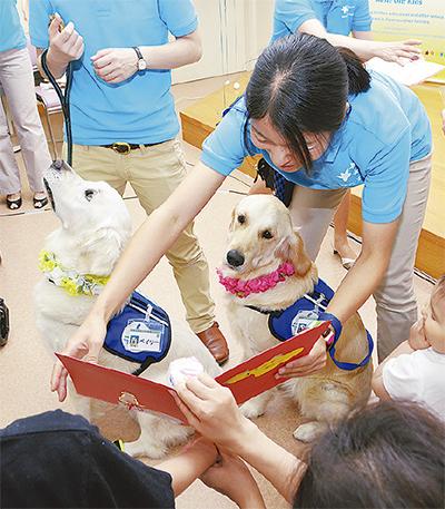 国内初、メスの医療犬誕生
