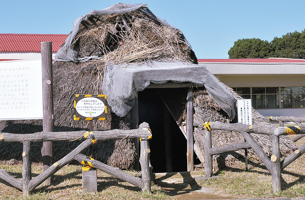 竪穴住居を建て替え