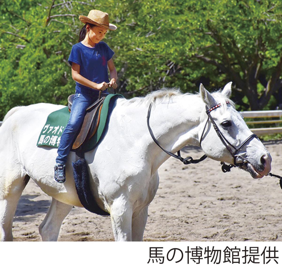 みなとみらいで乗馬体験