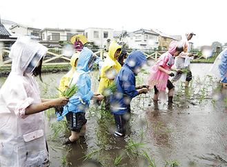 雨の中作業に励む子ども達(竹内弘和氏提供)