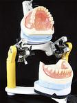 吸い付き、痛くなく、よく噛めると定評のある「BPS精密入れ歯」