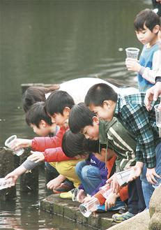 チビッ子が約4000匹の稚魚を放流した