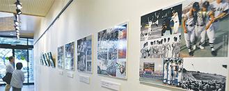 会場内には35枚ほどの写真パネルが展示されている