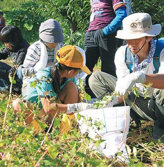 豊かな自然環境の下「そば刈り体験」などにチャレンジ