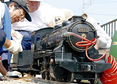 松並木に蒸気機関車を