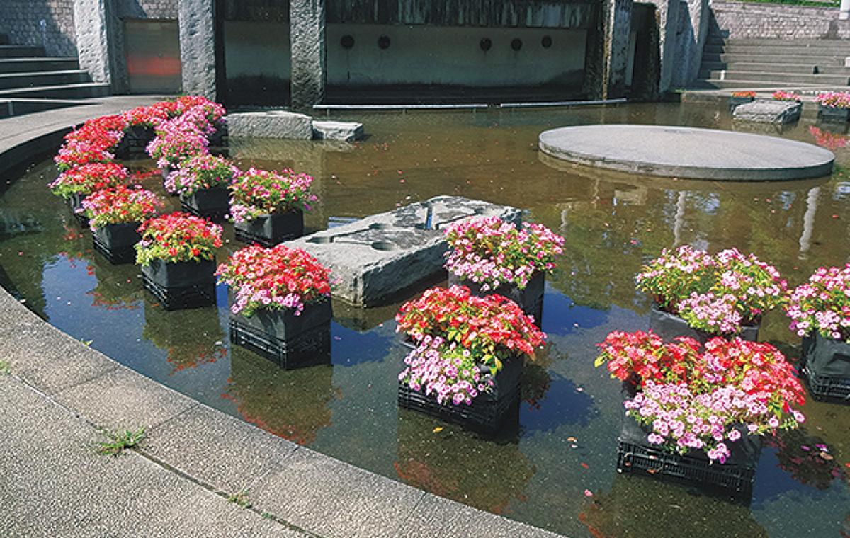環浄植物で噴水苑作り