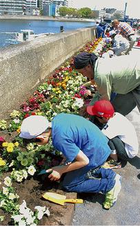 花を植える児童