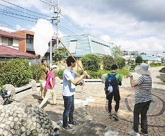 東横フラワー緑道におけるトンボ調査