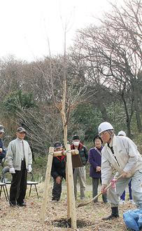 記念樹の根に土をかけるメンバー