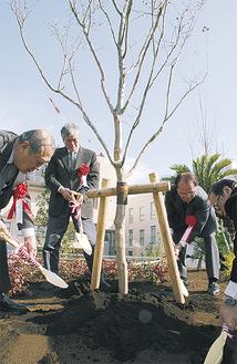 植樹式でサルスベリに土をかける関係者