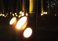 月夜に輝く竹灯ろう