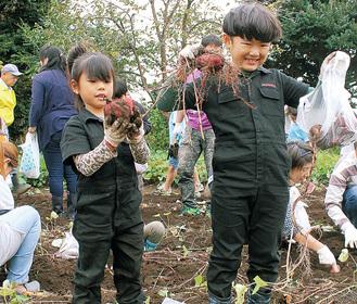 さつま芋を収穫して喜ぶ子どもたち