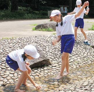 水遊びを楽しむ児童ら
