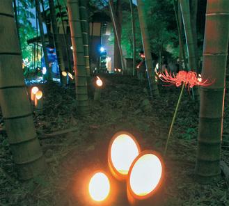 約400個の竹とうろうが並んだ