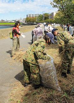 川沿いの枯れ草を清掃