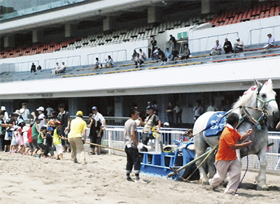 川崎競馬でオープンデー