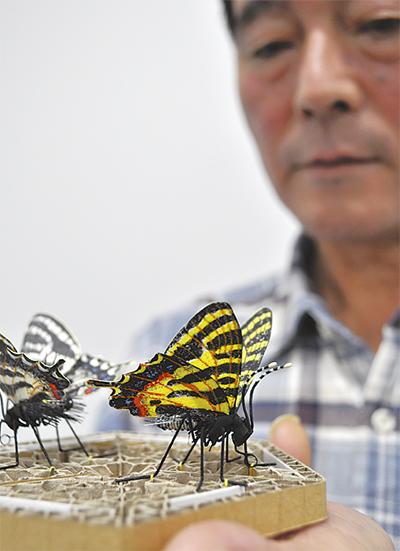 身近なもので昆虫創作