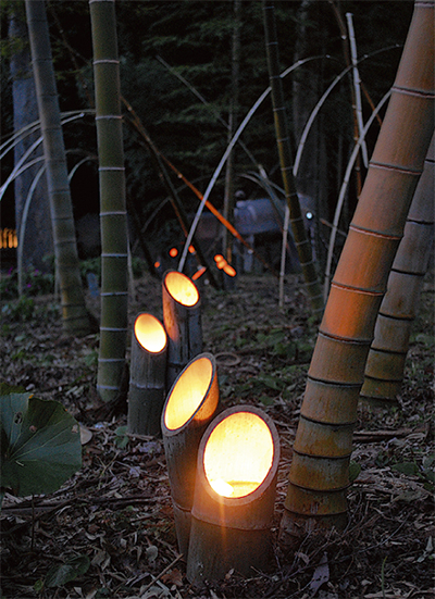 秋の夜照らす竹灯