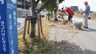 鶴見川を一斉清掃