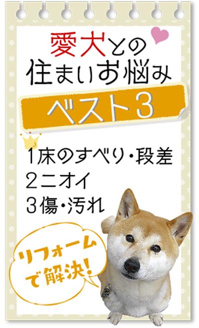 愛犬も快適な住まい提案