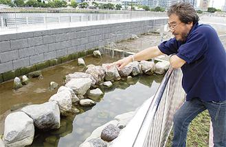 池の説明をする坂本さん
